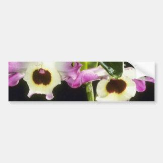 Andemos amarillo flor del Mountain View Dendrob Etiqueta De Parachoque