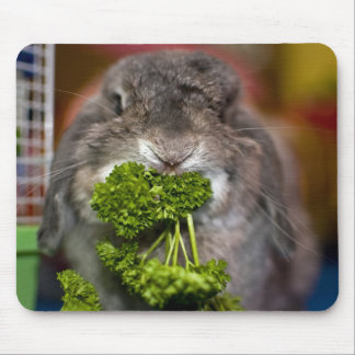 Andora the bunny: Parsley Attack Mouse Pad