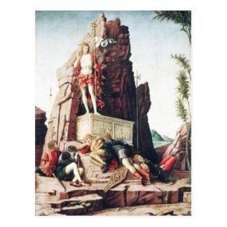 Andrea Mantegna Art Post Card