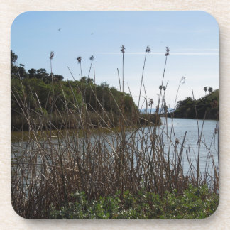 Andree Clark Bird Refuge, Santa Barbara, CA Drink Coaster