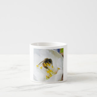 Andrena Margandrena Krausiella Gusenleitner Bee Espresso Cup