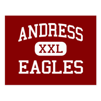 Andress - Eagles - High School - El Paso Texas Postcard