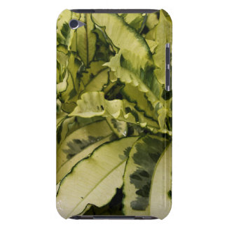 Andrew Croton Case-Mate iPod Touch Barely There Barely There iPod Case