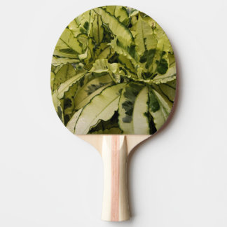 Andrew Croton Ping Pong Paddle