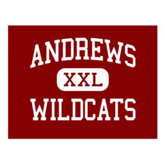 Andrews - gatos monteses - centro - Andrews Tarjeta Postal