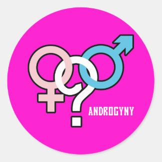 Androgyny Classic Round Sticker