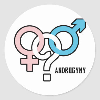 Androgyny Round Stickers