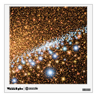 Andromeda Black Hole Wall Graphic