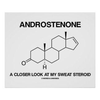 Androstenone A Closer Look At My Sweat Steroid Poster