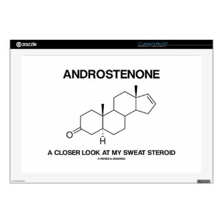 """Androstenone A Closer Look At My Sweat Steroid Skins For 17"""" Laptops"""