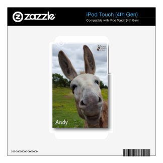 Andy Decals For iPod Touch 4G
