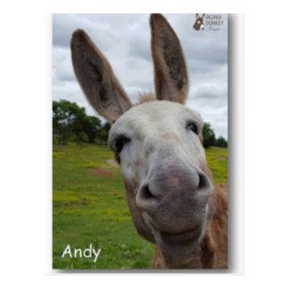 Andy Postcard