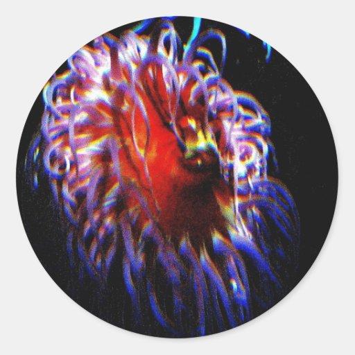 Anémonas de mar de neón etiqueta redonda