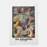 Anémonas de mar toallas de cocina