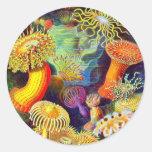 Anémonas del mar de Ernst Haeckel Pegatina Redonda