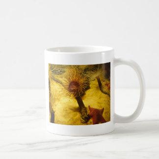 Anemone And Starfish Mug