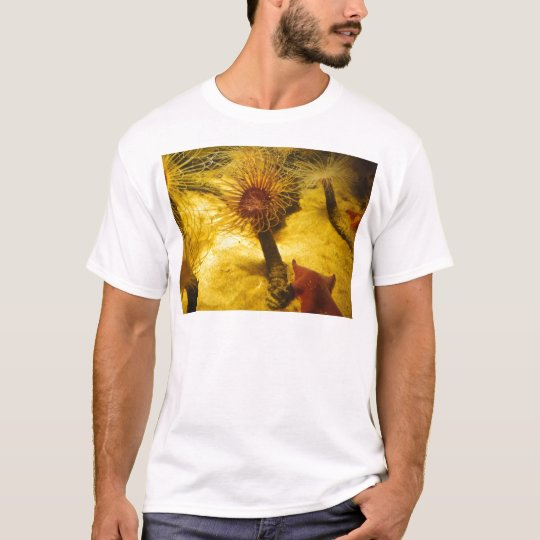 Anemone And Starfish T-Shirt
