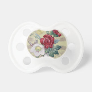 Anemone carnation Roses Pacifier