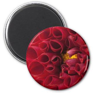 Anemone Dahlia Round Magnet