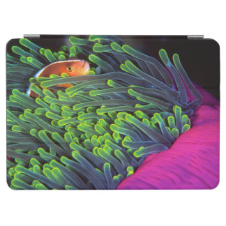 Anemone Fish Hiding In Anemone, Mozambique 2 iPad Air Cover