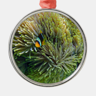 anemone fish metal ornament