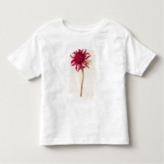 Anemone, from 'La Guirlande de Julie', c.1642 Toddler T-shirt