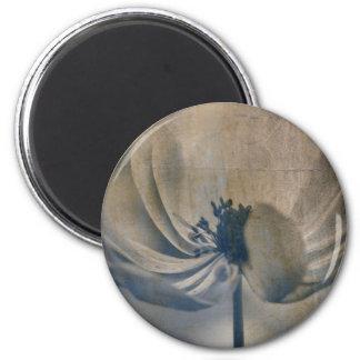 anemone in the garden magnet