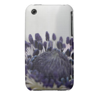 Anemone Inside iPhone 3 Covers