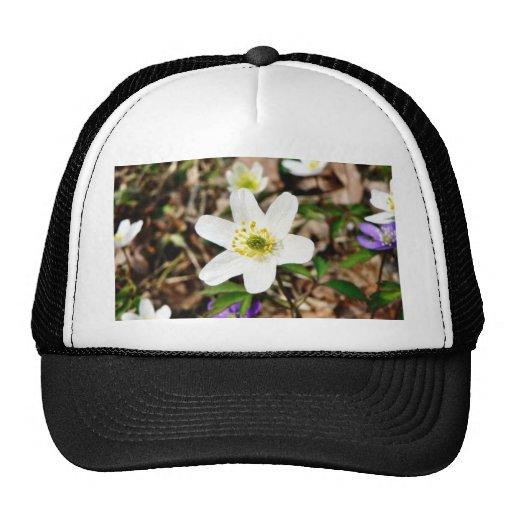 Anemone Nemorosa Mesh Hats