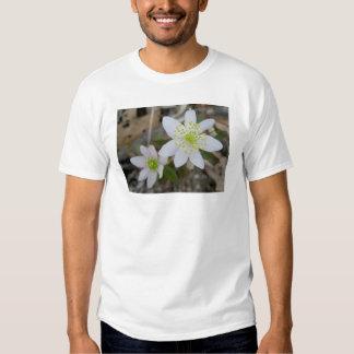 Anemone Pair Child Kid T-Shirt