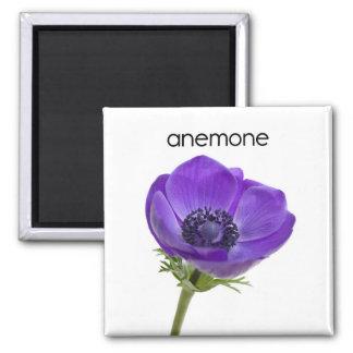 Anemone Refrigerator Magnet