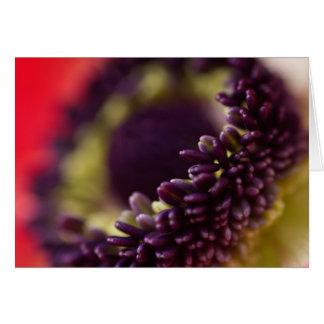 Anemone Stamens Card