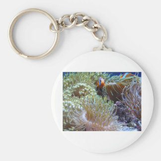 anemone, with peeking clown fish keychain