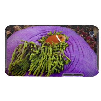 Anemonefish and large anemone barely there iPod cover