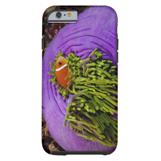 Anemonefish and large anemone tough iPhone 6 case