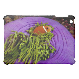 Anemonefish and large anemone iPad mini case