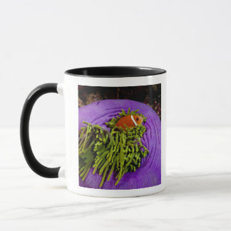 Anemonefish and large anemone mug