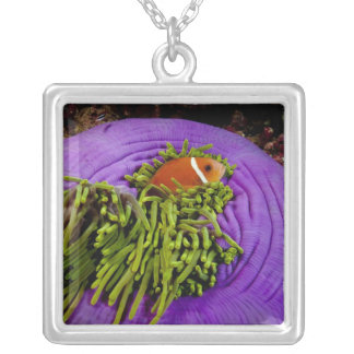 Anemonefish and large anemone square pendant necklace
