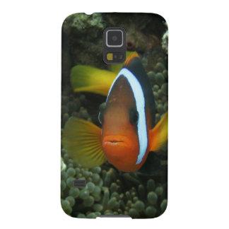 Anemonefish negro (melanopus del Amphiprion) Funda Galaxy S5