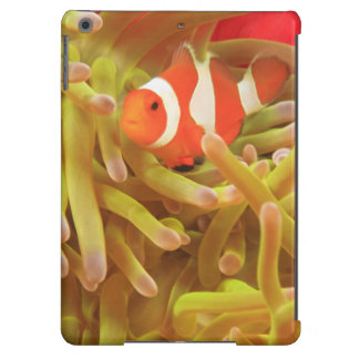 anemonefish on giant indo pacific sea anemone, case for iPad air