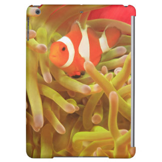 anemonefish on giant indo pacific sea anemone, iPad air case
