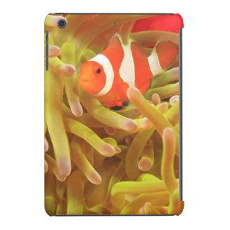 anemonefish on giant indo pacific sea anemone, iPad mini retina case