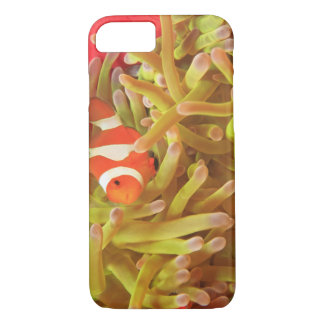 anemonefish on giant indo pacific sea anemone, iPhone 7 case