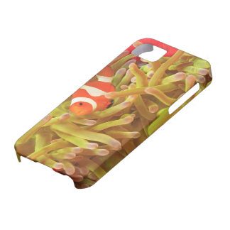 anemonefish on giant indo pacific sea anemone, iPhone SE/5/5s case