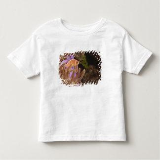 anemonefish, Scuba Diving at Tukang Toddler T-shirt