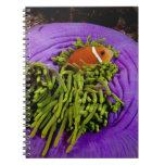 Anemonefish y anémona grande spiral notebook