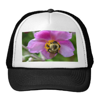Anemones and Bee Trucker Hat