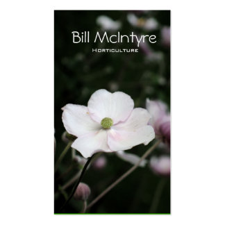 Anemones garden landscape Double-Sided standard business cards (Pack of 100)