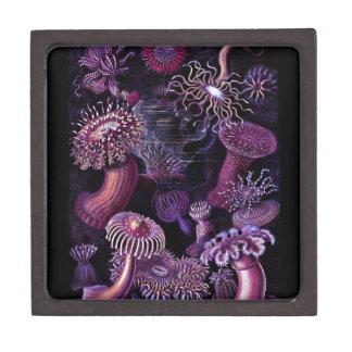Anemones in Dark Purple Jewelry Box