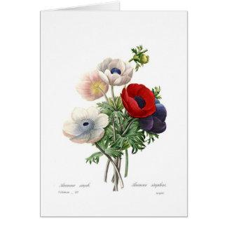 Anemonies Card